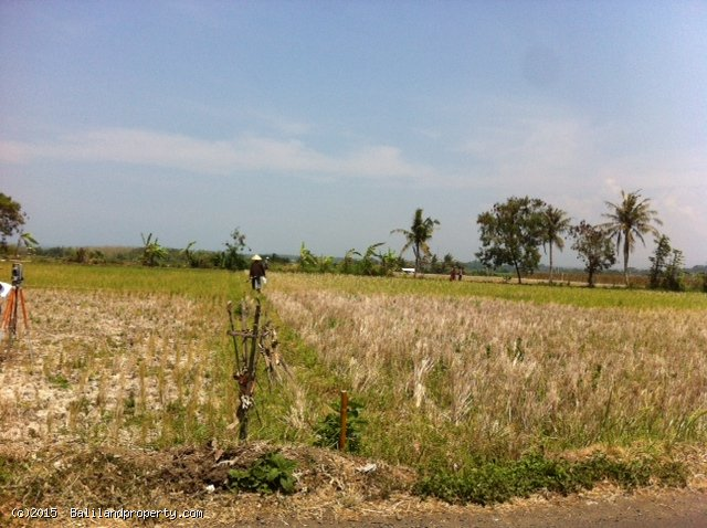 Ocean view 1500m2 freehold land Kerambitan