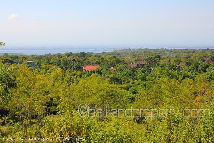 Affordable 1 hectare Bali land plot sale with panoramic views