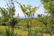 Affordable 1 hectare Bali land plot sale with panoramic views: