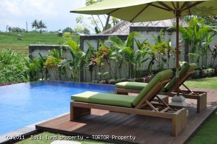 Bali 3 bedroom Canggu villa for yearly rent rice fields infinity pool