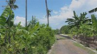 Freehold 700m2 plot near Mertasari beach