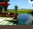 Bali freehold estate for sale 4 villas 7 bedrooms great turnovers