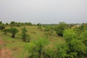 Development land for sale in Bukit Bali: